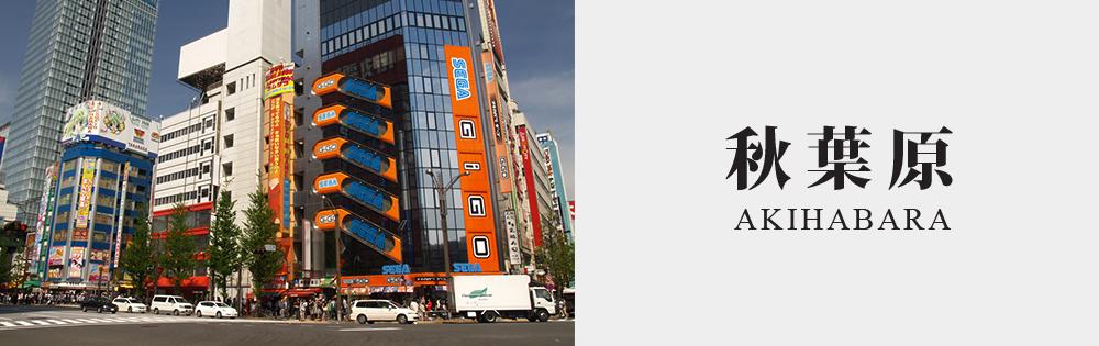 akihabara slide00001