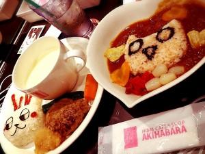 akihabara017